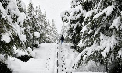 Kampüste Kar Yağışı Sonrası Tablo Gibi Görüntüler